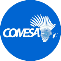 Web-Based Monitoring & Evaluation Software Tool For COMESA